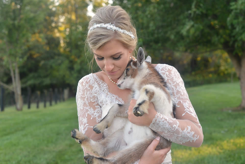 kentucky weddings and receptions on farm - bride with baby goat